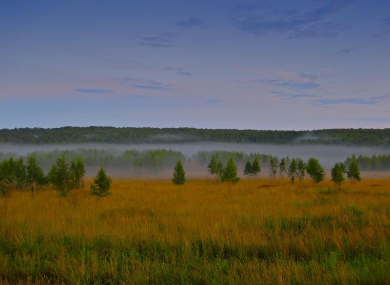 Ищите области с туманом
